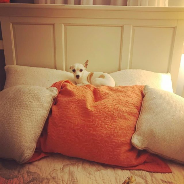 Pillow throne